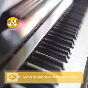 Các hợp âm piano rất cần thiết cho đệm hát piano