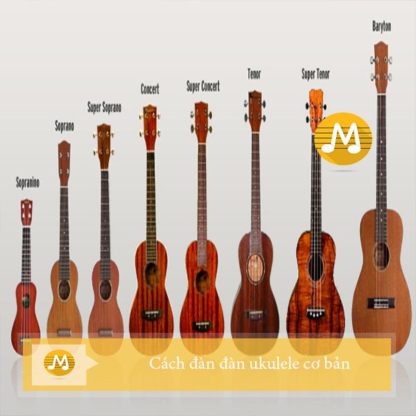 Cách đàn đàn ukulele cơ bản