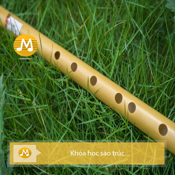 Khóa học sáo trúc