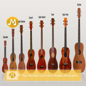học ukulele | cách chơi ukulele đúng cách